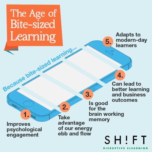 The Age of Bite-Sized Learning